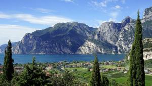 limoncello-licor-italiano-viaje